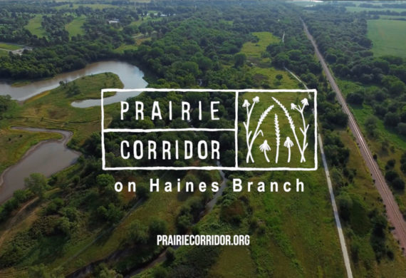 Prairie Corridor on Haines Branch – Fundraising Video